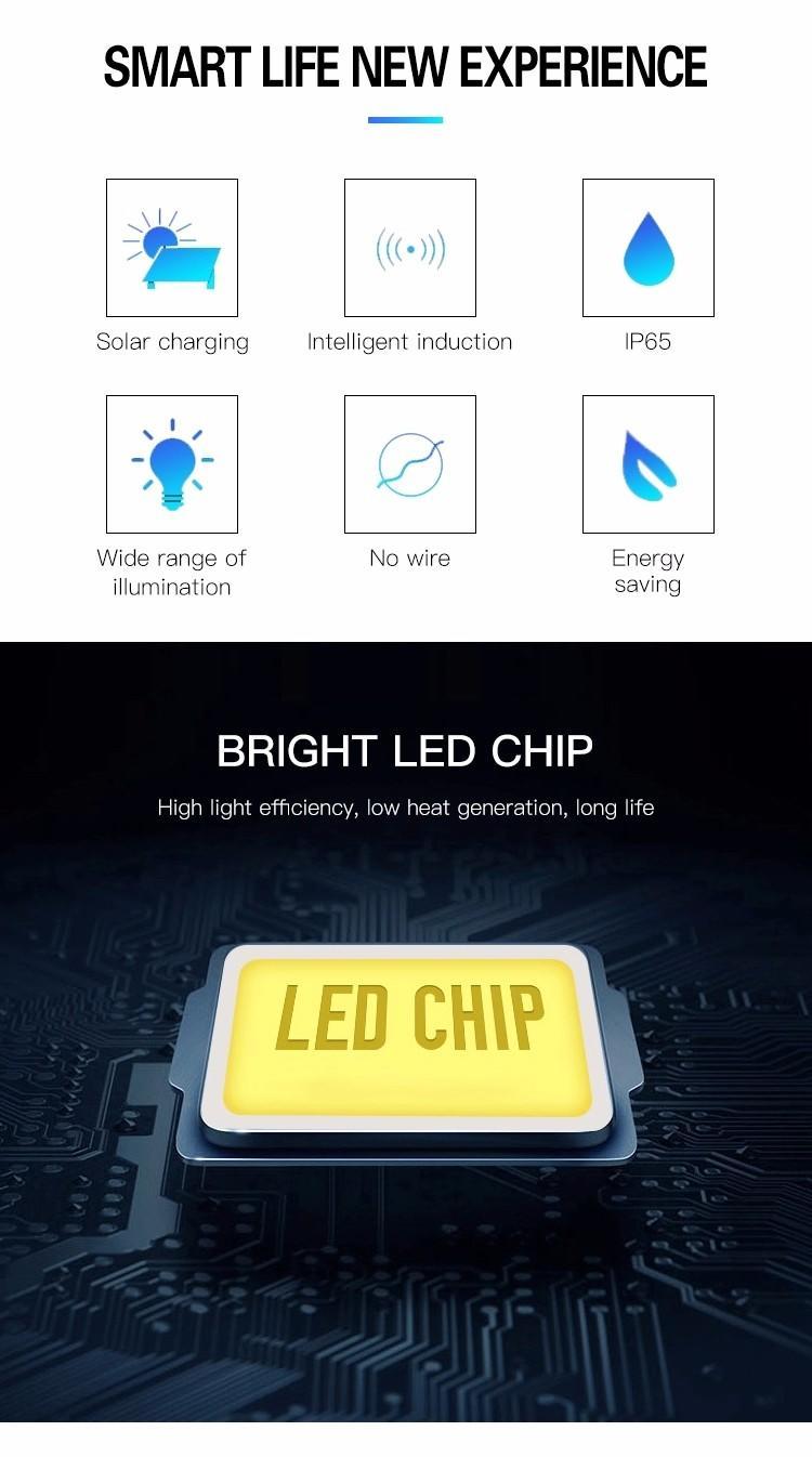 walkway solar garden path lights motion Litel Technology company