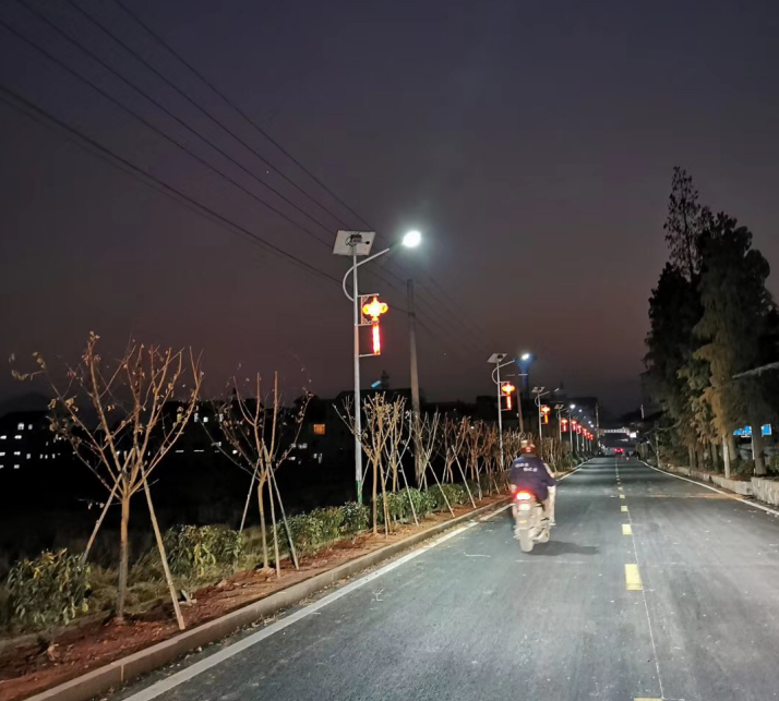 Thailand Torch split-type solar street light project in road