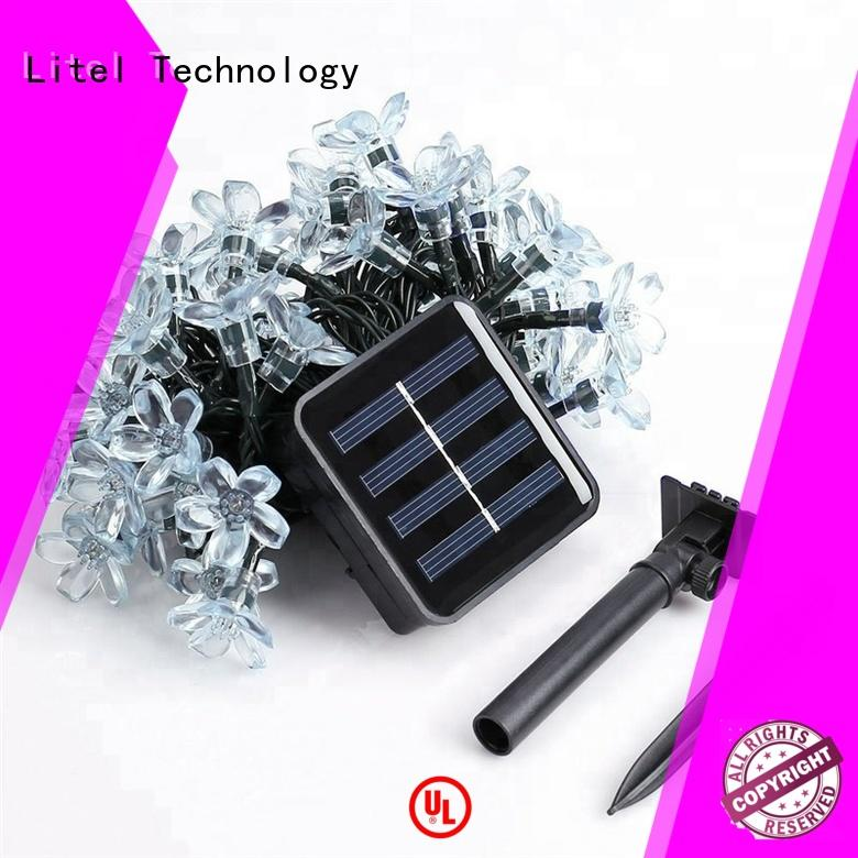 Litel Technology hot-sale decorative garden light easy installation for decoration