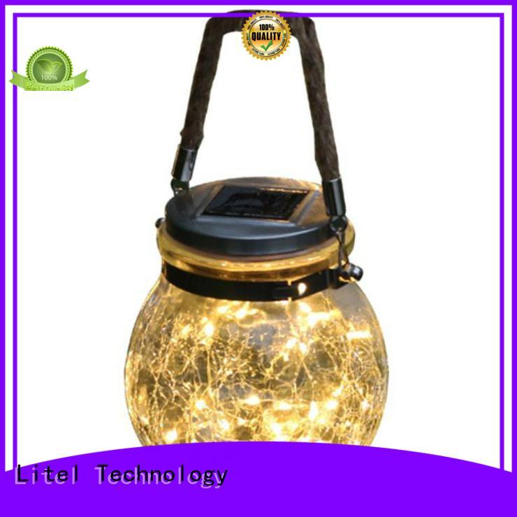 Litel Technology custom outdoor decorative lights at discount for family