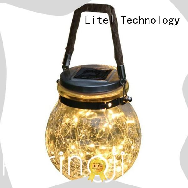beautiful decorative garden light hot-sale for family Litel Technology