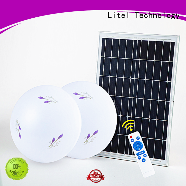 at discount solar ceiling light OBM for road